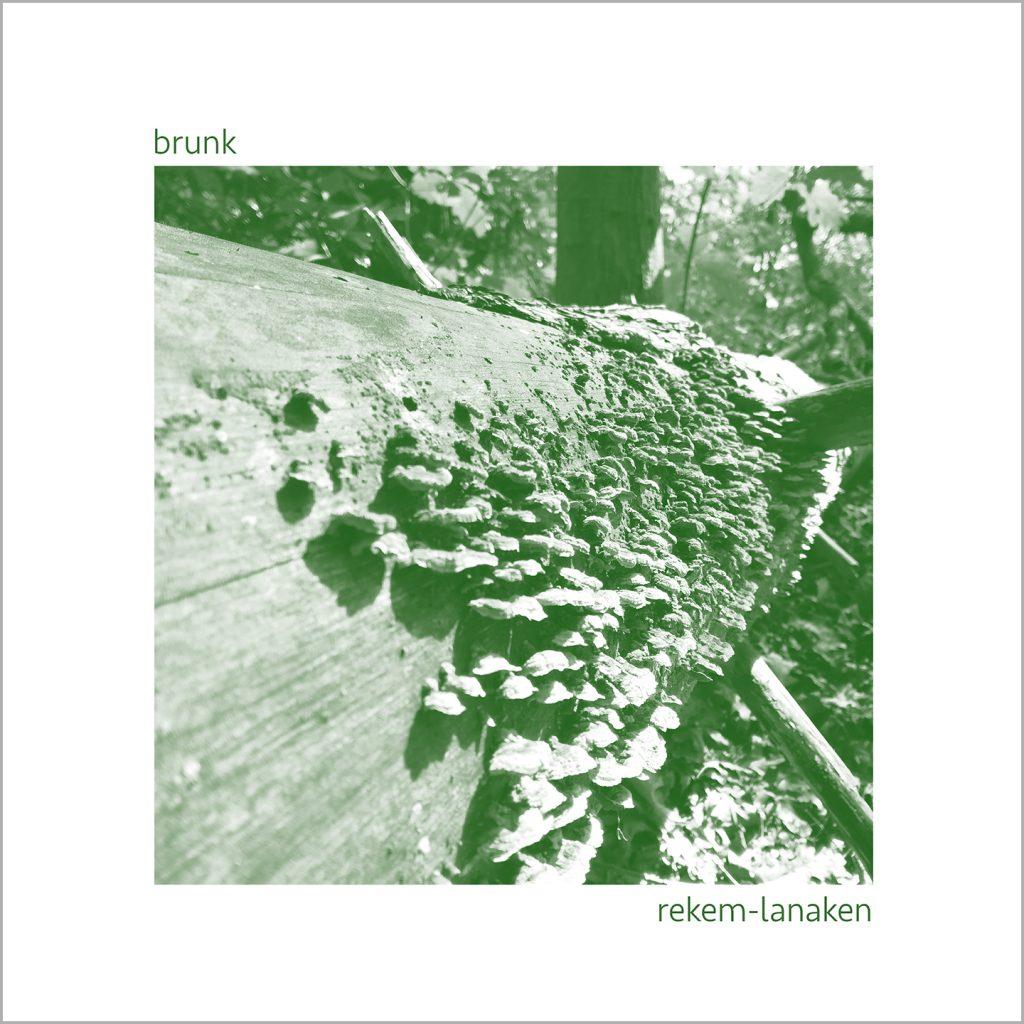 brunk - rekem lanaken - atwork - A quiet ep with 3 short tracks of solo acoustic guitar improvisation and some forest fieldrecording, available now on https://brunk.bandcamp.com/album/rekem-lanaken