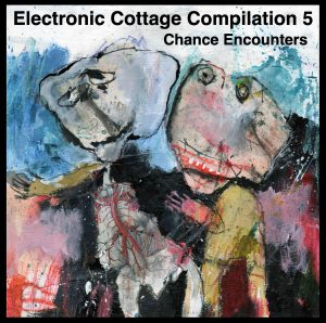 Electronic Cottage Compilation 5 — Chance Encounters