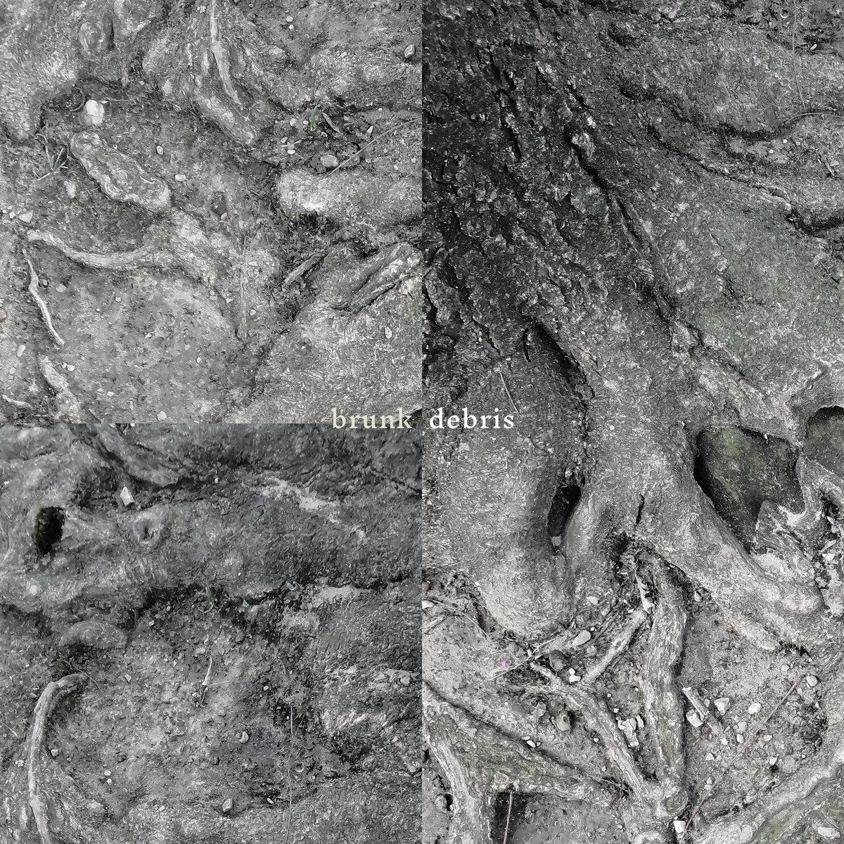 brunk – debris
