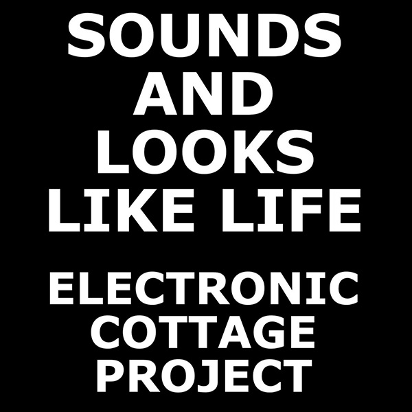 Sounds and Looks Like Life – international community video/photo/audio assemblage project